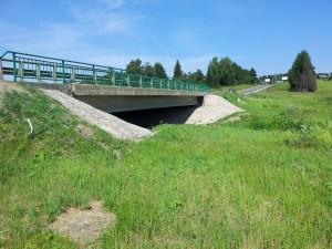 Мост у нас.пункта Причистое