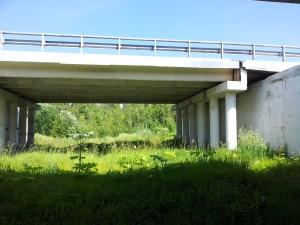 Мост 89 км. Новорижского шоссе